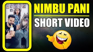 This Dog Brody is Always Funny 😆 #shorts | Harpreet SDC