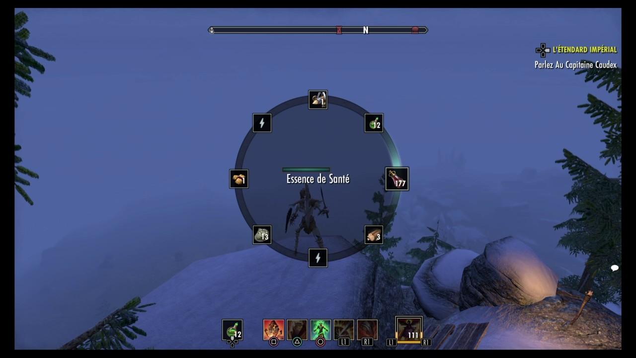 Teso Build Chevalier Dragon