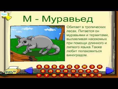 ИГРА Бип Бип участвует в гонке  про машинки на русском языке новинки Прохождение 2014 года