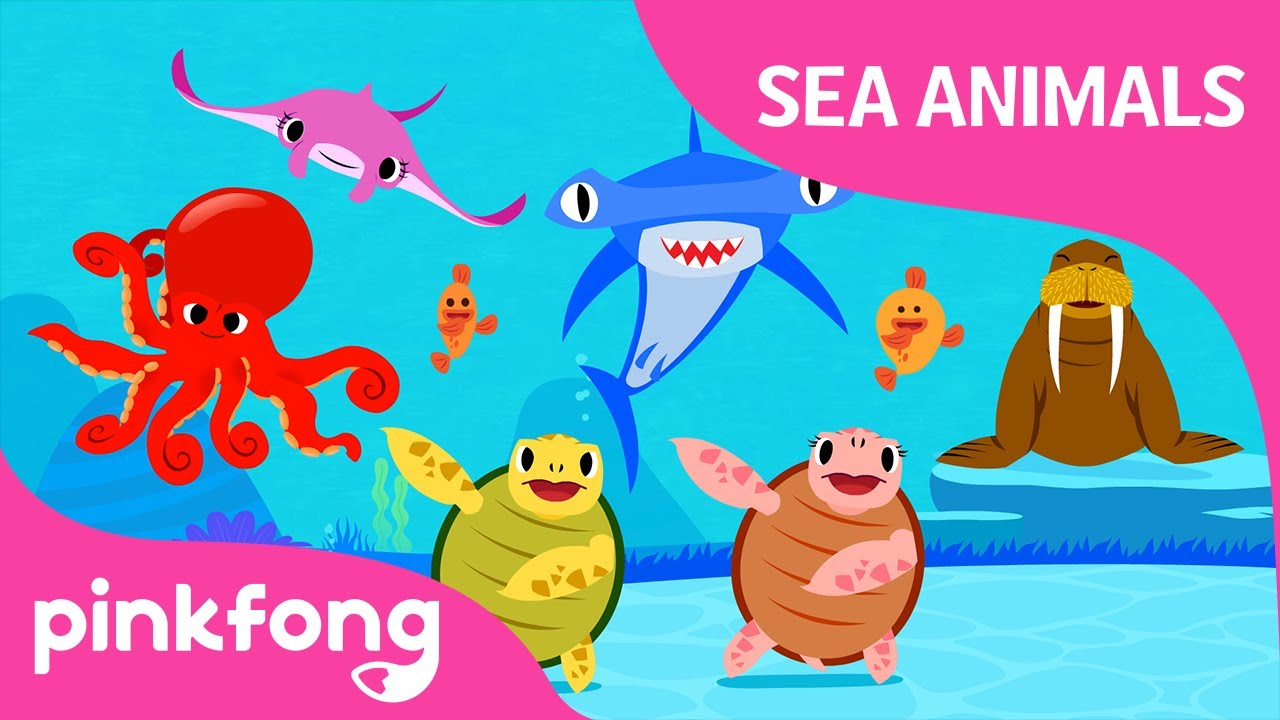 Move Like Sea Animals Sea Animal Songs Animal Songs Pinkfong Songs For Children Youtube
