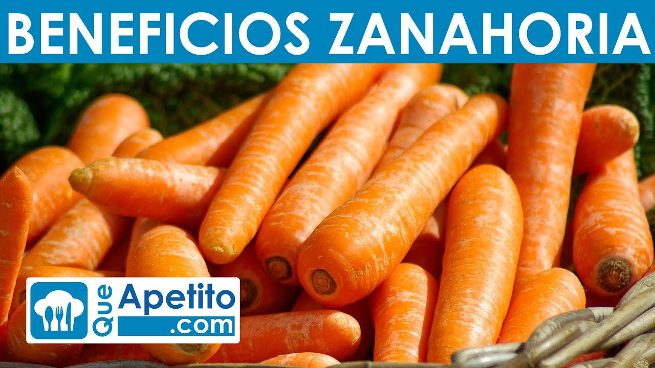 8 Propiedades Y Beneficios De La Zanahoria Queapetito Youtube Publicado en 20 abril 202026 abril 2020 por ruso. 8 propiedades y beneficios de la zanahoria queapetito