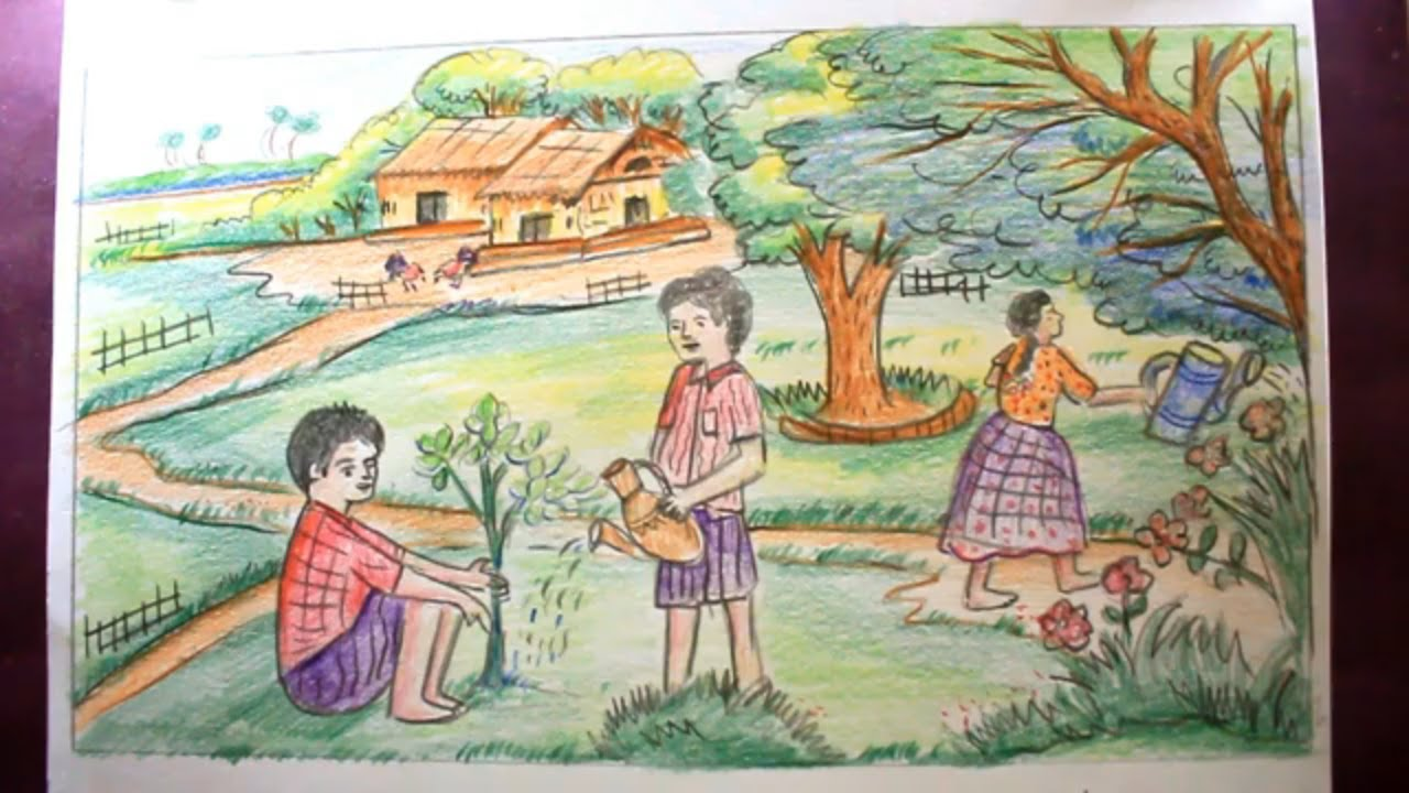 How TO Draw Scenery Of Tree Plantation With Color Pencil ...