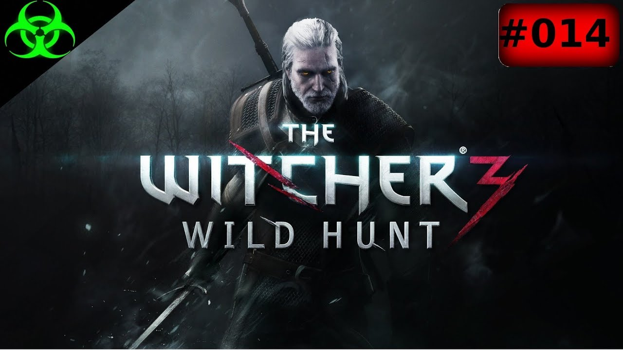 The Witcher 3 BпїЅSe Hexe