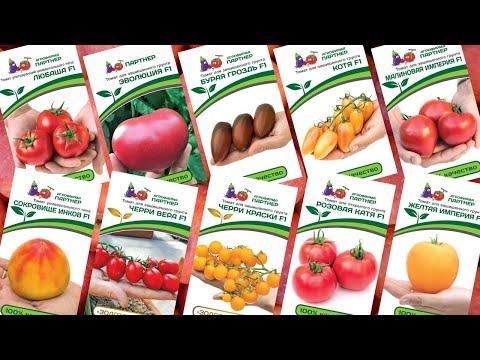 Обзор семян томатов Партнёр или что садить в 2019 г.