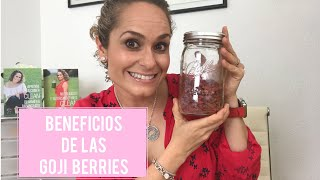 BENEFICIOS DE LAS GOJI BERRIES (BAYAS DE GOJI)