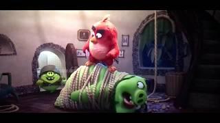 Angry birds 2 Team up birds pigs😂