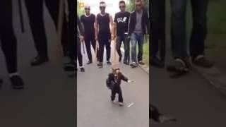 New Funny Monkey Videos 2016 ||Best  Funny whatsapp videos