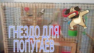 гнездо Для Попугаев 2019 Своими Руками! Parrot Nest 2019