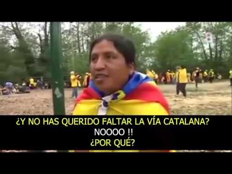 ecuatoriano catalan
