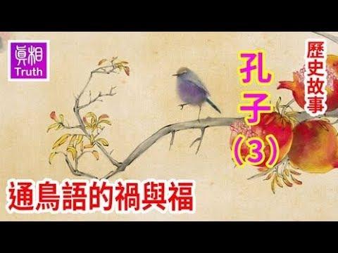 历史故事系列之 孔子篇(三)通鸟语的祸与福