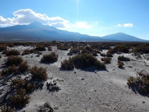 Cycling the Altiplano, Bolivia