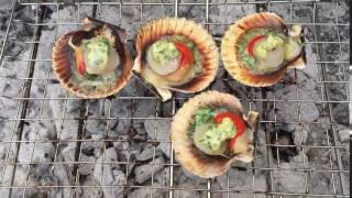 BBQ Scallops - Grilled Scallops with shell on with Butter Garlic Sauce