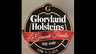 LE Grande Finale at Gloryland Holsteins