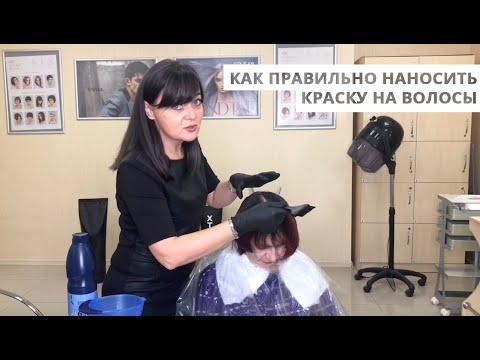 Как правильно наносить краску на волосы - подробно от парикмахера