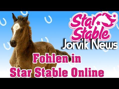 Star Stable Online Jorvik News | Fohlen in Star Stable Online