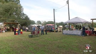 Cow Island LIVE! Music Festival happening in Abbeville