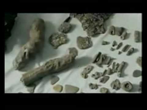 Dwarka, India - 12,000 Year Old City of Lord Krishna Found -