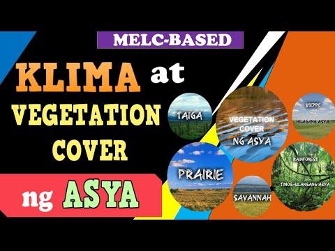 Vegetation Cover ng Asya