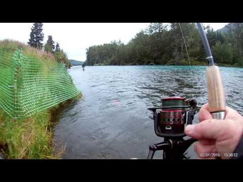FHD0038- Salmon Fishing Alaska