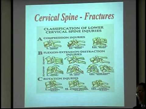 Harry Weiser, MD - Treatment of Head & Spinal Injuries