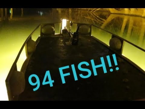 Bowfishing, WE FILL THE BOAT!!