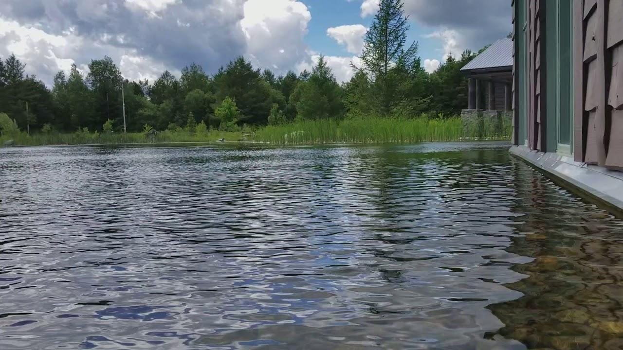 Wild Center Waterfront (Tupper Lake, NY, June 2017) - YouTube