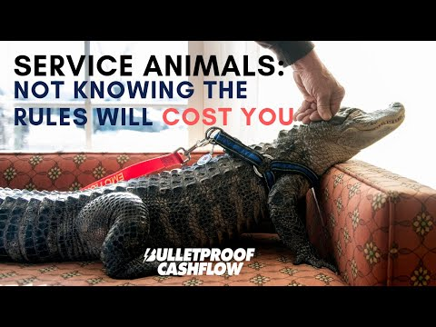 Service Animals: Not Knowing the Rules Will Cost You