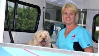 Dog Grooming Makeover - Awesome Doggies