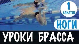 НАИБОЛЬШЕЕ ПРОДВИЖЕНИЕ В БРАССЕ. УДАР НОГАМИ БРАССОМ. УРОКИ БРАССА. УРОК 1 @Swimmate.ru
