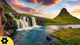Healing Music, Relaxation Music, Chakra, Relaxing Music for Stress Relief, ✿3259C