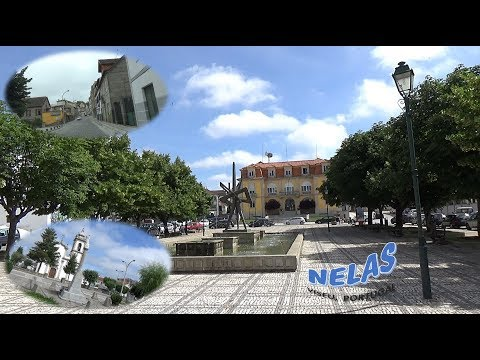 NELAS, Viseu