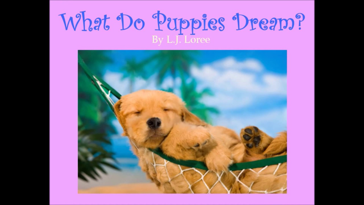 Why does the puppy dream