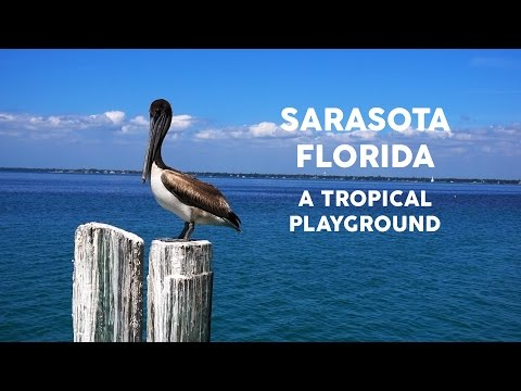 Sarasota Florida A Tropical Playground