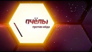 «Пчёлы против мёда» c Андреем Николаевым