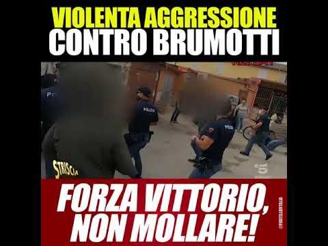 Download Giorgia Meloni: Violenta aggressione contro Brumotti. Forza Vittorio, non mollare!