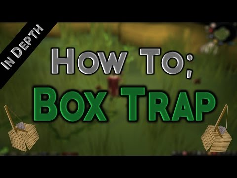 How To Lay Box Traps Efficiently