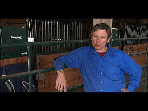 Jeff Moore, ESMT  Equine Rehab &Therapy