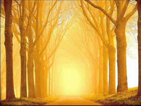 John Foxx - Eternity Sunrise (Cathedral Oceans III)