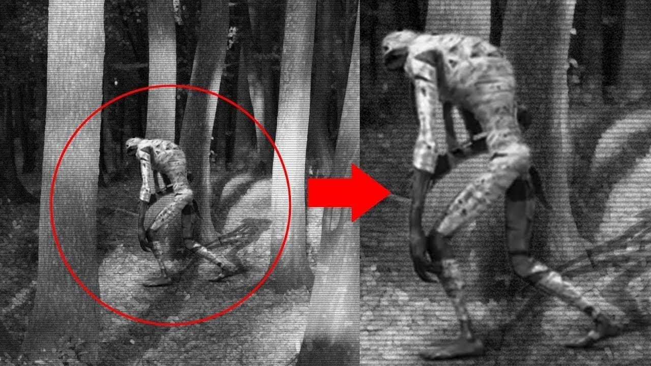 Cryptozoology Aliens Or Ghosts Terrific Real Ghost Caught On Camera Sightings Scary Videos