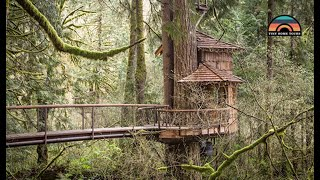 Live Simply In This Gorgeous Tree House Tiny Home   Full Of Clever Build Insights