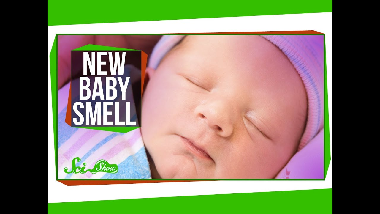 Uncategorized Good Smelling why do babies smell so good youtube