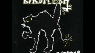 Birdflesh - No Fucking Heaven