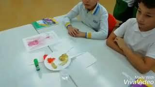 Урок познание мира в 3 классе