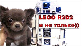 Лего Звёздные войны Дроид R2D2 (10225) и моя собака Обзор Lego Star Wars