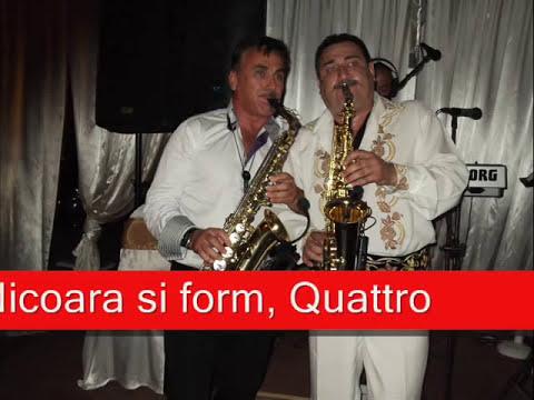 (Instrumental live)cu Nelutu Rusu,Petrica Nicoara si form Quattro tel 0745559723 .wmv