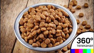 В Подмосковье открыли завод по производству кормов для домашних животных