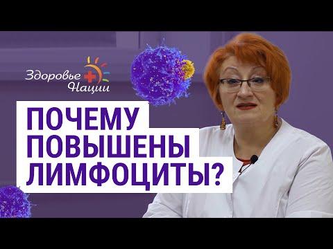 Причины повышенных лимфоцитов в крови (Гордиенко Н.Н.)