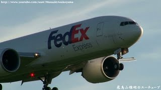 [早朝の成田] FedEx Express 777F N851FD landing @ Narita RWY16R [August 15, 2014]