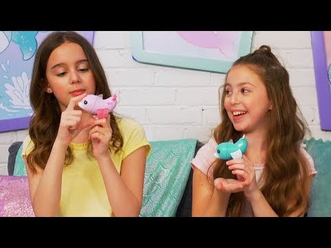 Fingerlings | How to Play with Your Dolphin Fingerling | Toy Videos for Kids | Pretend Play