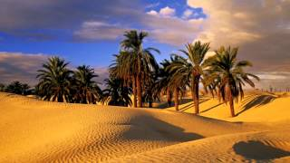 3 Hours Arabian Music Relaxing Ambient Egyptian Music